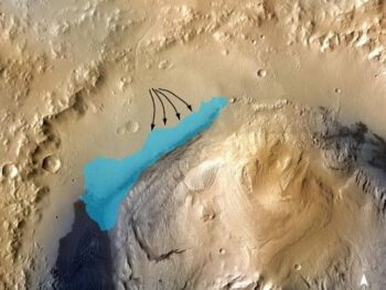 У учёных появились очередные факты существования жизни на Марсе