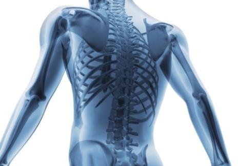 Создан препарат который может помочь в борьбе с остеопорозом