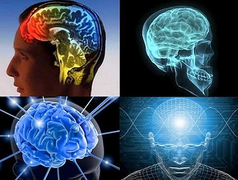 Учёные научились считывать мысли людей