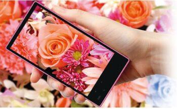 Sharp объявил о разработке смартфона с 4К дисплеем