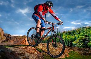 Velozona – велосипеды на любой вкус