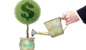 Первый венчурный фонд создает АО «Инвестиционно-Аграрный Фонд»