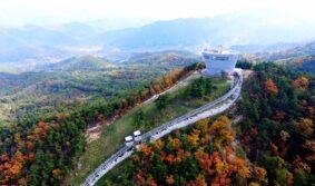 Южная Корея предлагает олимпийским сборным по тхэквондо провести предолимпийские сборы на своих тренировочных базах