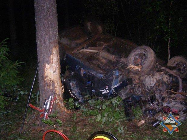 Под Белыничами Daewoo Nexia врезалась в дерево и опрокинулась