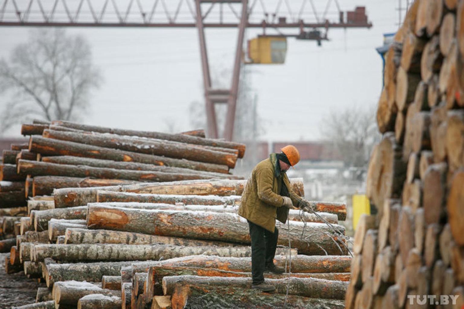 За последние несколько лет «Борисовдрев» стал символом проваленной модернизации