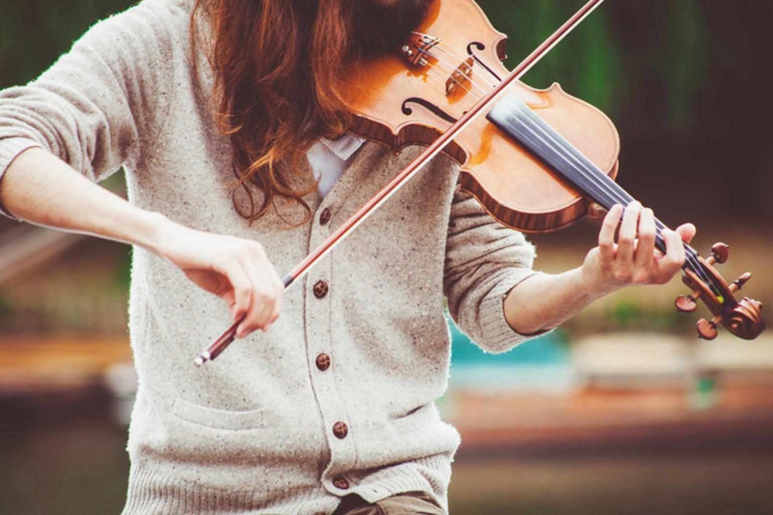 Muzykant skripka pixaby