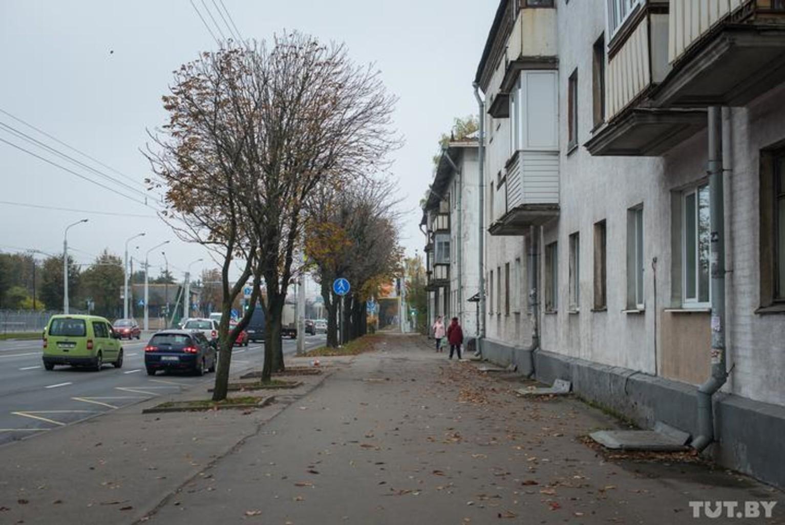 Orlovskaya serebryakova tutby mvs 7355