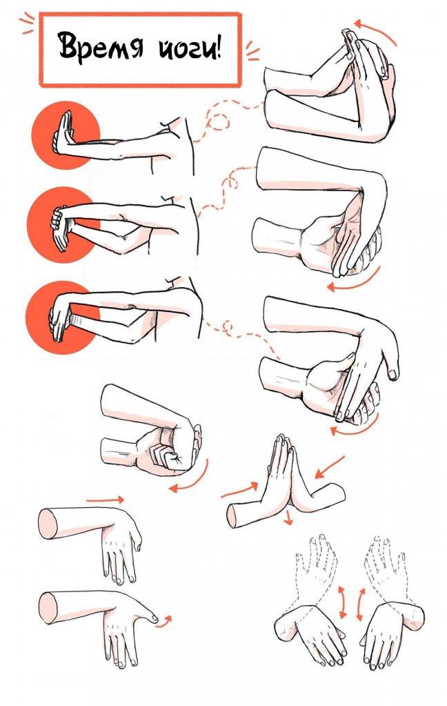 часть упражнения на кисти рук в картинках порода пастушьих