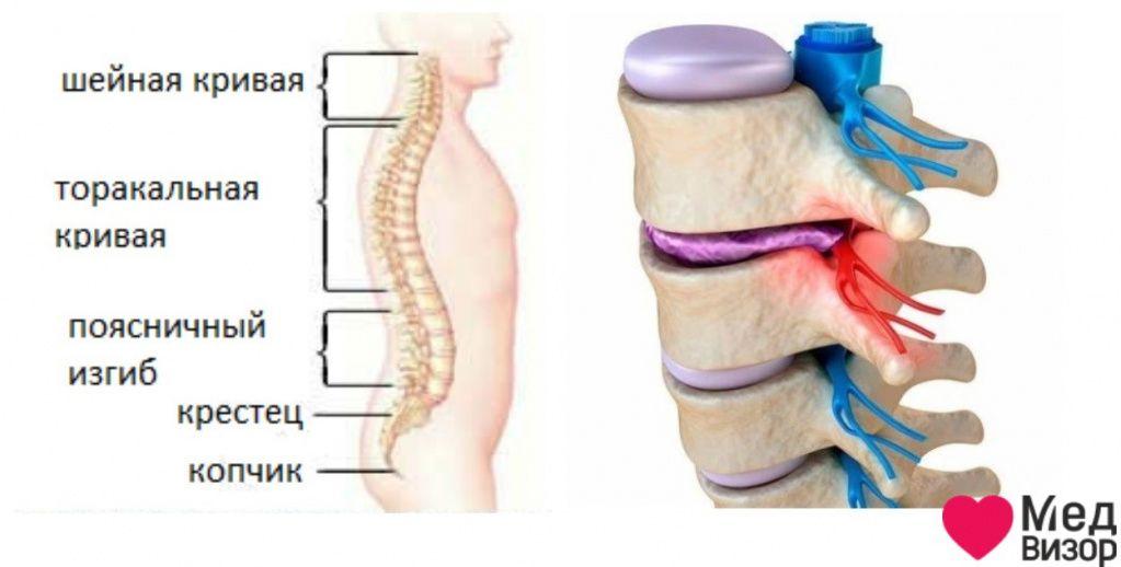 menopauza osteoporoza)