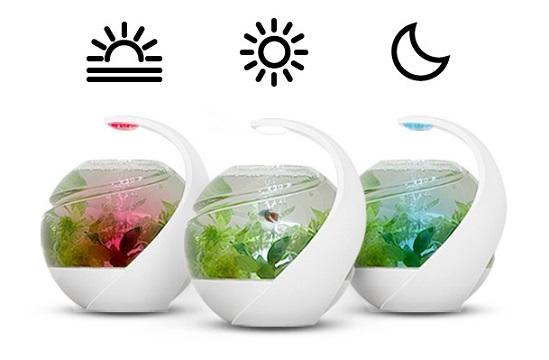 Беззаботный умный аквариум Avo