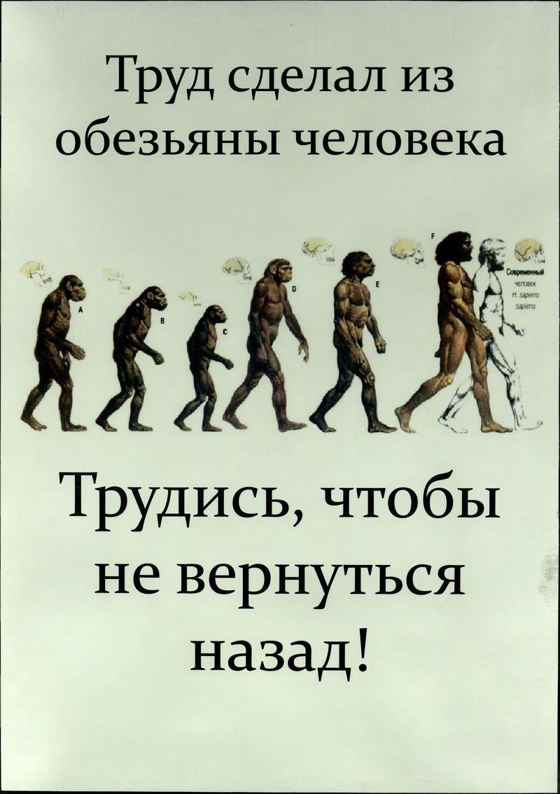 """«Труд сделал из обезьяны человека». [Из серии плакатов группы «Швемы""""]"""