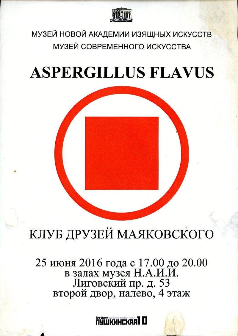 Клуб друзей Маяковского. Aspergillus flavus