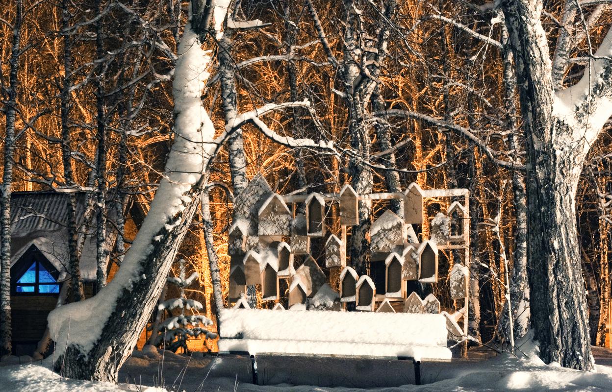 Зимний фестиваль современного искусства «ЩИ»