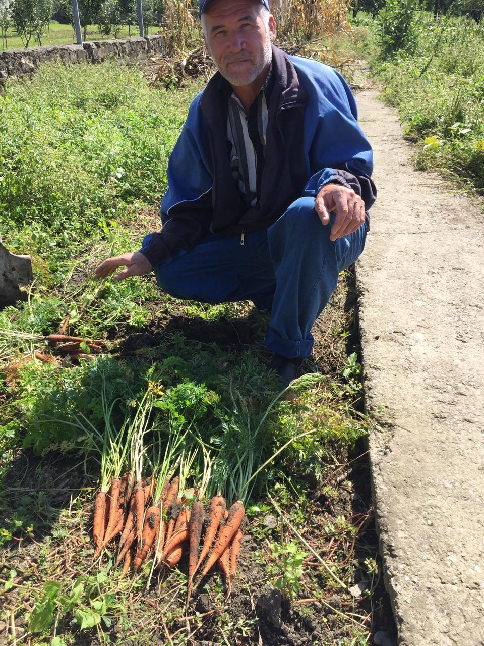 Урожай наших огородников