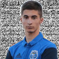Гюлалиев Тимур Аразович