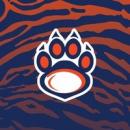 Владивостокские тигры