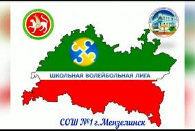 Внутришкольный этап республиканского проекта Республики Татарстан