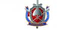 Логотип команды Воевода