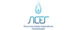 Логотип команды ЛСЕГ