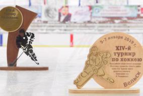 XIV турнир памяти двукратного Олимпийского чемпиона И.А.Ромишевского (2006 - 2007 г.р.)