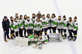 В женском хоккее каждая игра - событие!