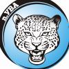 Ягуар 2003-2005