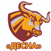 Десна 2004-2005