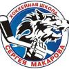 Челябинские волчицы (2004-2006)