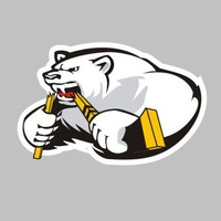 Шегарские медведи