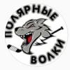 Полярные Волки - 2004-2005