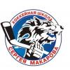 Челябинские волчицы 2009-2007