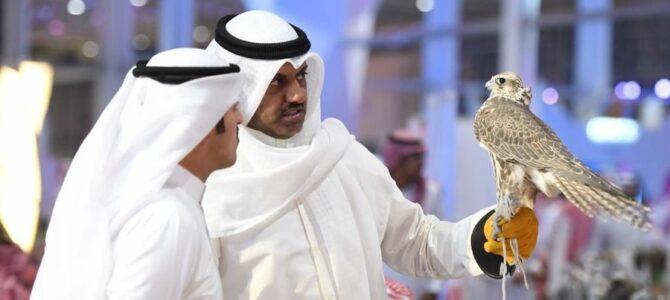 Выставка Saudi Falcons and Hunting Exhibition получила немало положительных отзывов