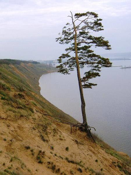 Вид на речной порт Тольятти