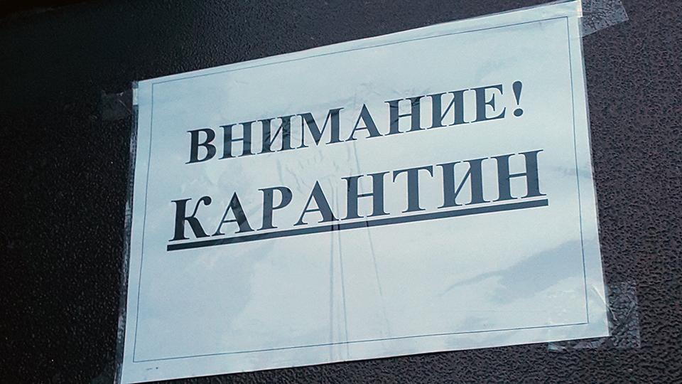 Ямал во власти ОРВИ: школьников экстренно отправляют на карантин