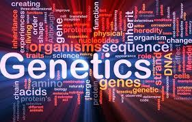 Победителями и призерами олимпиады по генетике стали более 400 столичных школьников