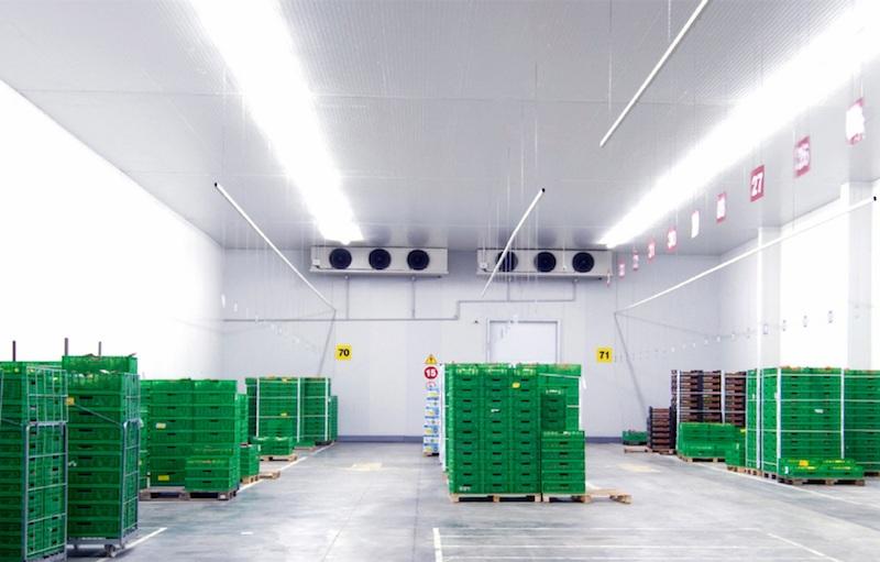«Гексалит Арктика» — полимерные полы для холодильных складов